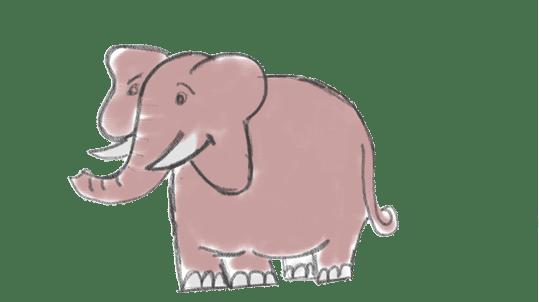 Cerebro elefante